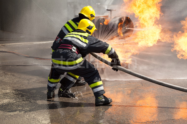 Firefighters in action. Fire department training. Stock photo © wellphoto