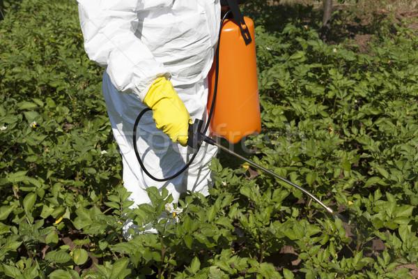 Pesticide spraying Stock photo © wellphoto