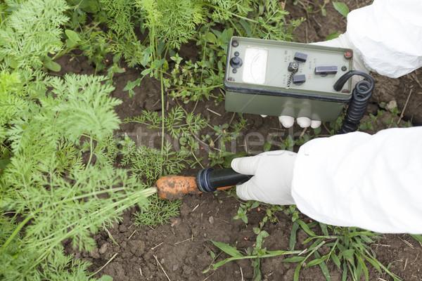 Promieniowanie warzyw charakter marchew gleby Zdjęcia stock © wellphoto