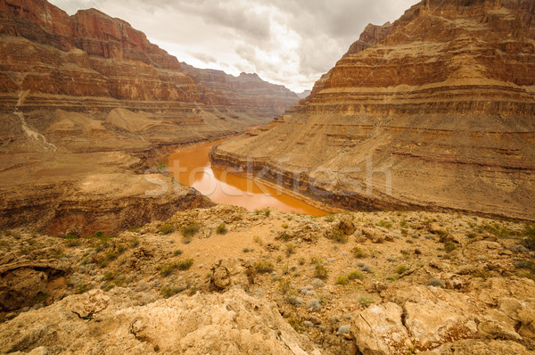 Grand Canyon Colorado rivier Rood groot muren Stockfoto © weltreisendertj