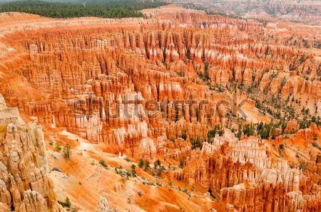 Kanyon amfitiyatro batı ABD Utah 2013 Stok fotoğraf © weltreisendertj
