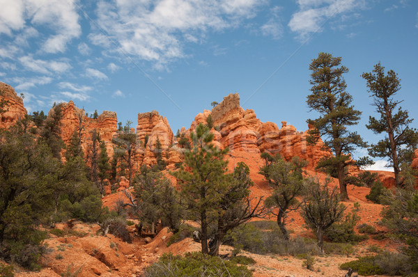 Stock photo: red Bryce Canyon