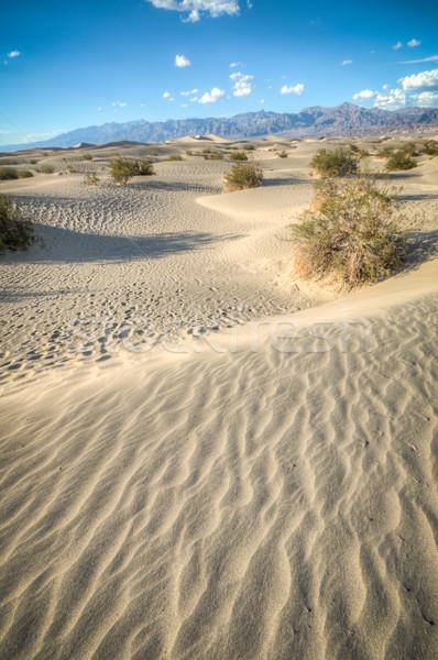 Death Valley natural sand dunes Stock photo © weltreisendertj