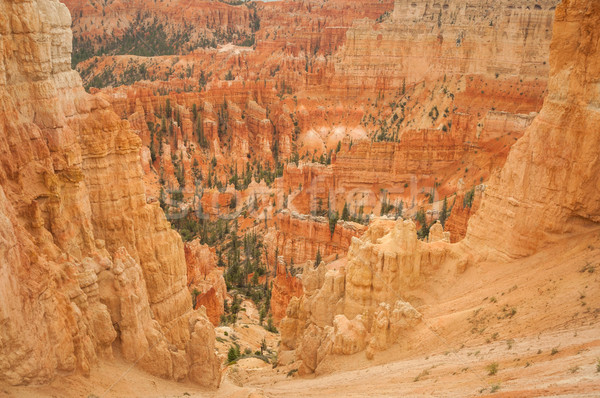 Canyon Bryce look into valley Stock photo © weltreisendertj