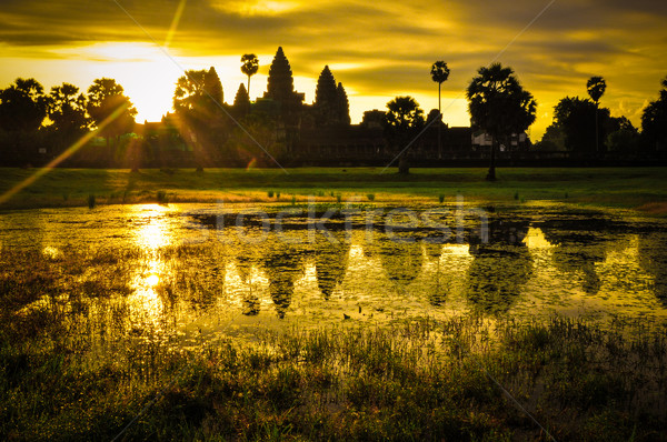 Gigante árvore prom Angkor Wat templo Camboja Foto stock © weltreisendertj