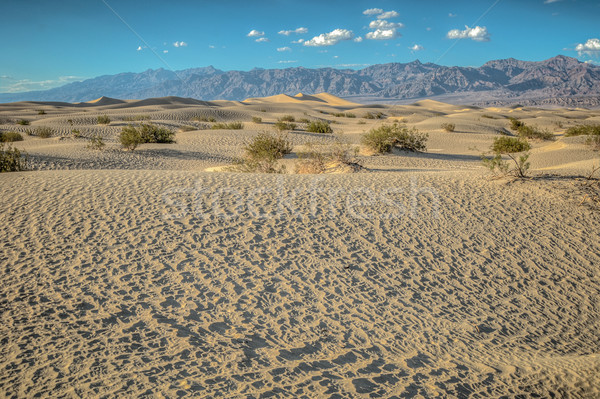 śmierci dolinie pustyni niebo charakter księżyc Zdjęcia stock © weltreisendertj