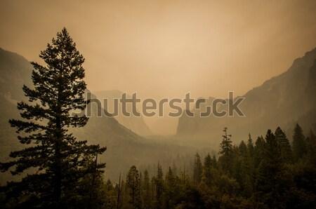 Yosemite widoku punkt pyłu ognia powietrza Zdjęcia stock © weltreisendertj