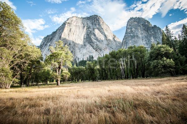 Yosemite mitad cúpula pradera cielo árbol Foto stock © weltreisendertj