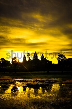 Giant tree covering Ta Prom and Angkor Wat temple, Siem Reap, Ca Stock photo © weltreisendertj
