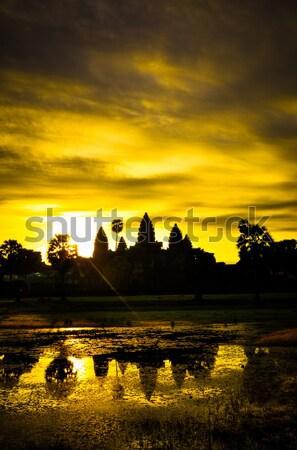 巨人 ツリー プロム アンコールワット 寺 カンボジア ストックフォト © weltreisendertj