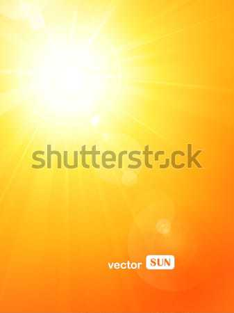 Vibrant hot summer sun with lens flare Stock photo © wenani