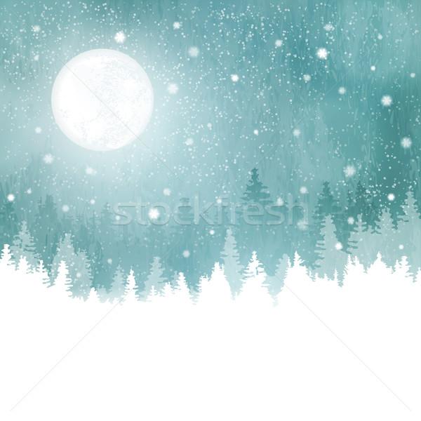 冬 風景 降雪 木 満月 ストックフォト © wenani