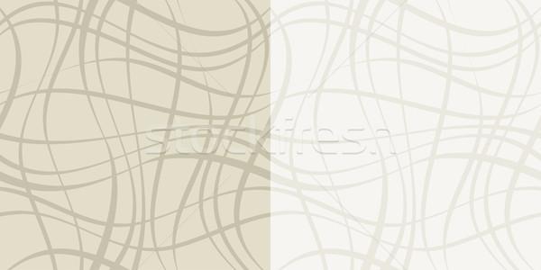 бесшовный геометрическим рисунком линия декоративный волнистый Сток-фото © wenani