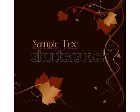 Prijs verkoop donkere elegante Rood Stockfoto © wenani