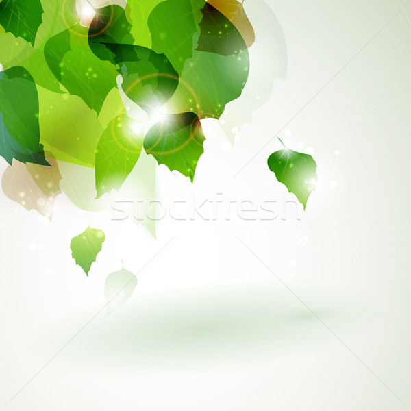 Abstract green foliage with light effects Stock photo © wenani