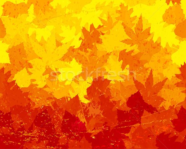 Distressed autumn leaves wallpaper Stock photo © wenani
