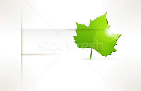 Vector label with green leaf Stock photo © wenani