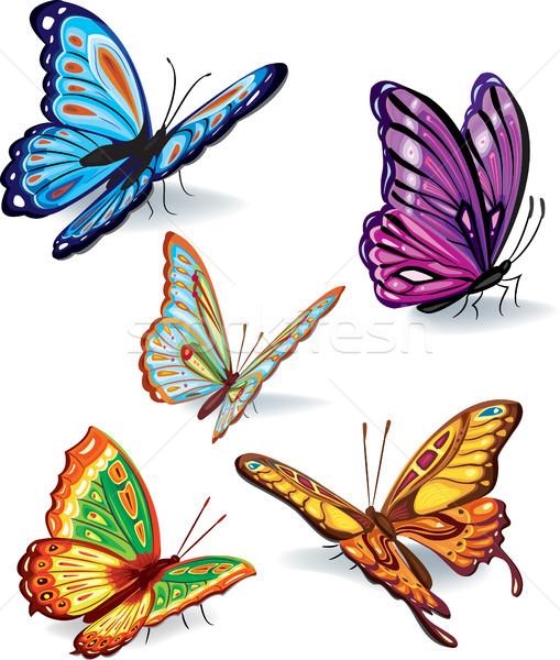 Ingesteld vlinders vlinder natuur insect vleugel Stockfoto © Wikki