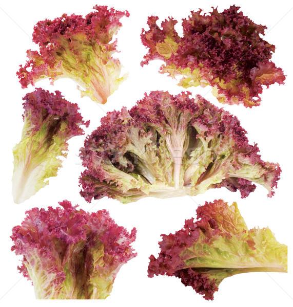 лист красный салата диета здорового продуктовых Сток-фото © Wikki