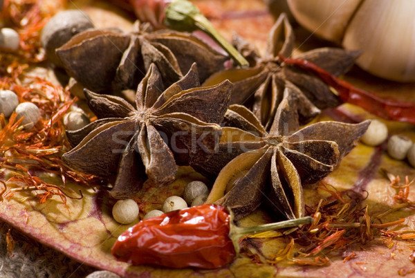 Star ander specerijen voedsel indian Spice Stockfoto © Wikki