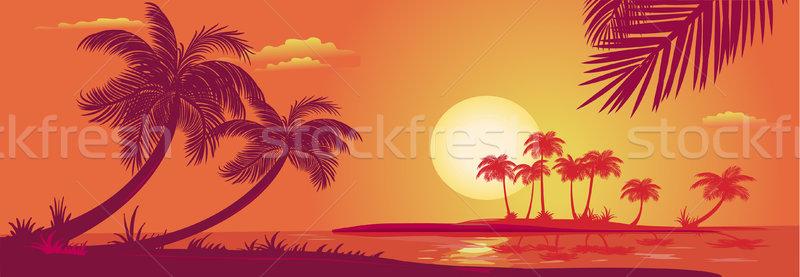 Zonsondergang palmen zee boom zon landschap Stockfoto © Wikki