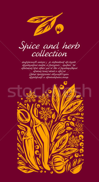 Stockfoto: Gestileerde · illustratie · Spice · voedsel · groene · poppy