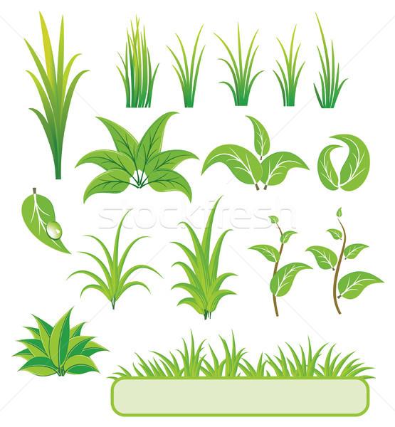Groene communie ontwerp natuur plant milieu Stockfoto © Wikki