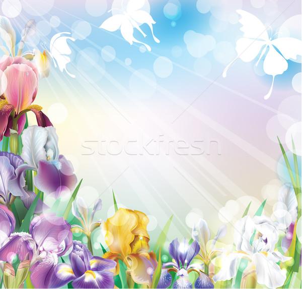 Background with flowers Stock photo © Wikki