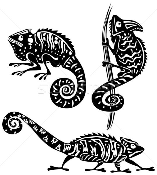 Zwart wit kameleon zwarte witte tattoo hagedis Stockfoto © Wikki