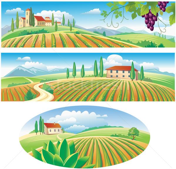 Stockfoto: Banners · landbouw · landschap · druiven · panorama · weide