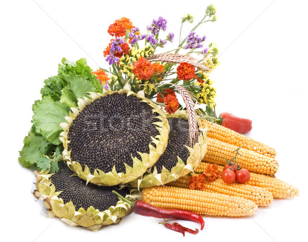 Still life. Vegetables Stock photo © Wikki