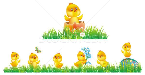 куриные трава Пасху весны природы яйцо Сток-фото © Wikki