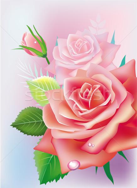 Wenskaart rozen bloem natuur schoonheid geschenk Stockfoto © Wikki