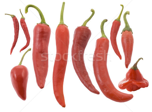 Different types of red red hot chili pepper Stock photo © Wikki