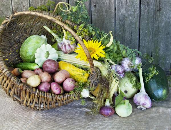 Oogst voedsel natuur zomer boerderij najaar Stockfoto © Wikki