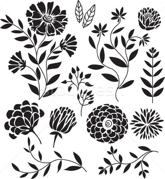 набор цветочный силуэта Элементы цветок дизайна Сток-фото © Wikki