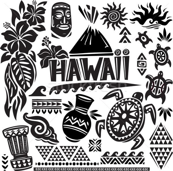 Hawaii zestaw liści maska wyspa wakacje Zdjęcia stock © Wikki