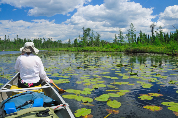 Stock photo: Paddling through the lily pads