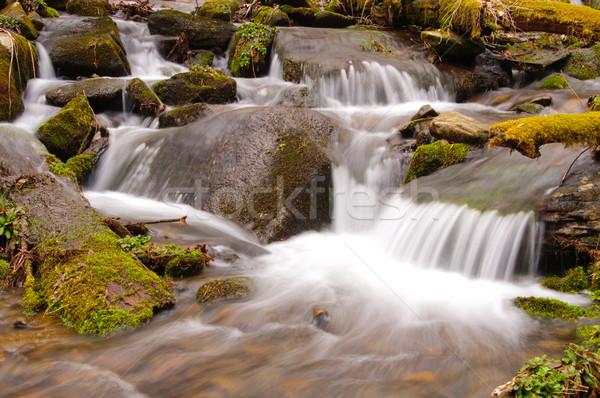 Cascade baisser crique magnifique smoky montagnes Photo stock © wildnerdpix