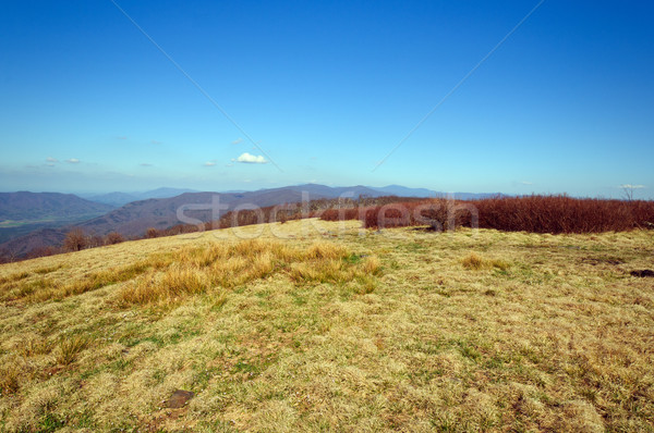 Bald Mountain on a Sunny Day Stock photo © wildnerdpix