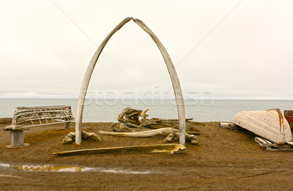 Whaling Monument in a Native Whaling Village Stock photo © wildnerdpix