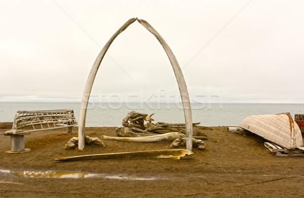 Nativo aldeia Alasca Foto stock © wildnerdpix