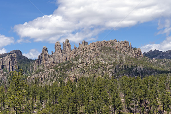 Dramatic Mountain Ridge in the Black Hills Stock photo © wildnerdpix