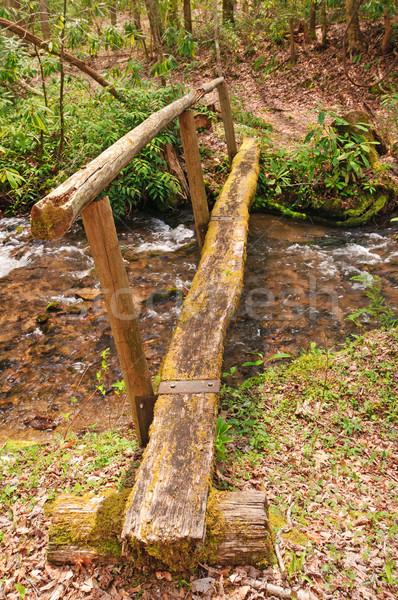 Rustique passerelle montagne écouter moulin crique Photo stock © wildnerdpix