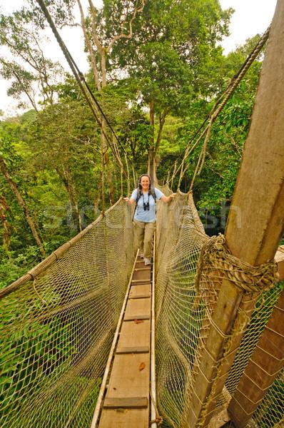 Természetjáró fa fölött esőerdő folyó Peru Stock fotó © wildnerdpix