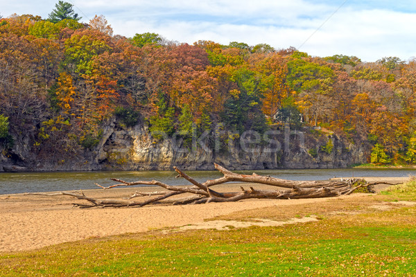 Calme rivière automne cèdre parc Iowa Photo stock © wildnerdpix