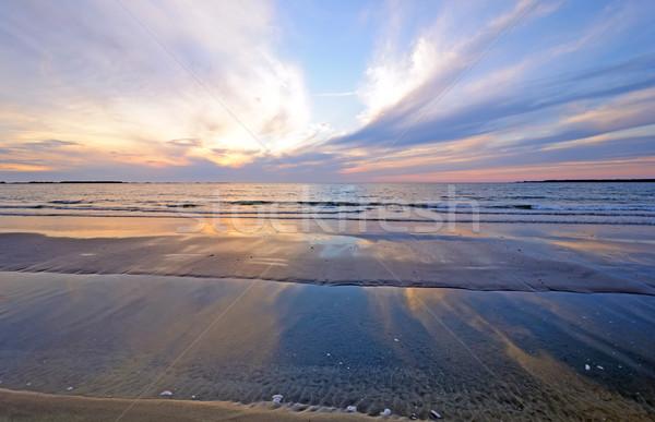 Sunset reflections on an ocean sandbar Stock photo © wildnerdpix