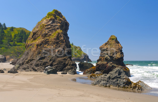 Coastal Pinnacles on the Beach Stock photo © wildnerdpix