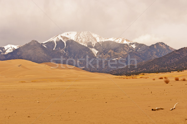 Sand Dunes and Snow on the Mountains Stock photo © wildnerdpix
