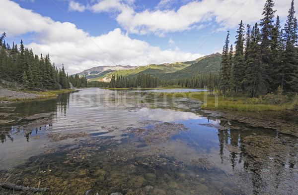 Rustig meer wildernis hoefijzer park Alaska Stockfoto © wildnerdpix